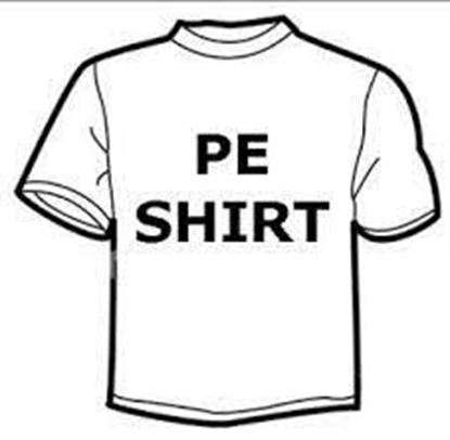 Picture of PE SHIRTS