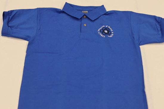 Picture of BLUE POLO