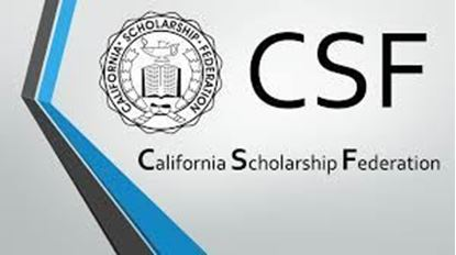 Picture of CSF DUES
